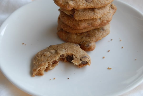 Chocolate Chip Vegan Snickerdoodles