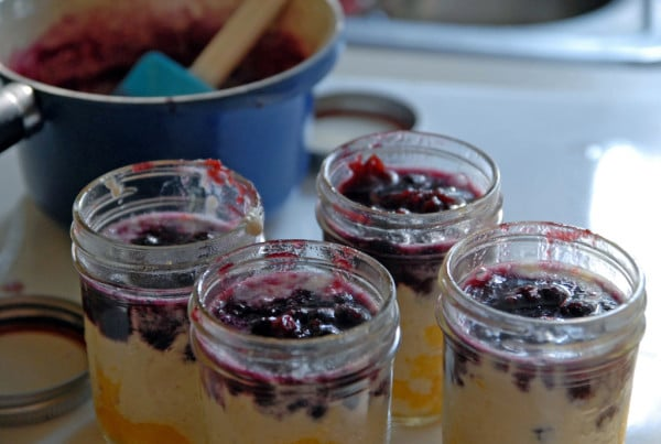 Mango Blueberry Semifreddo