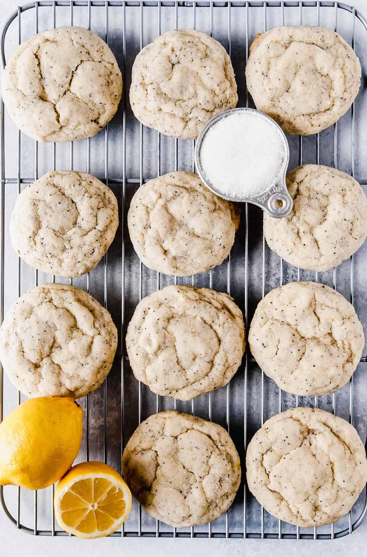 Citrus poppy seed vegan sugar cookies on cooling rack